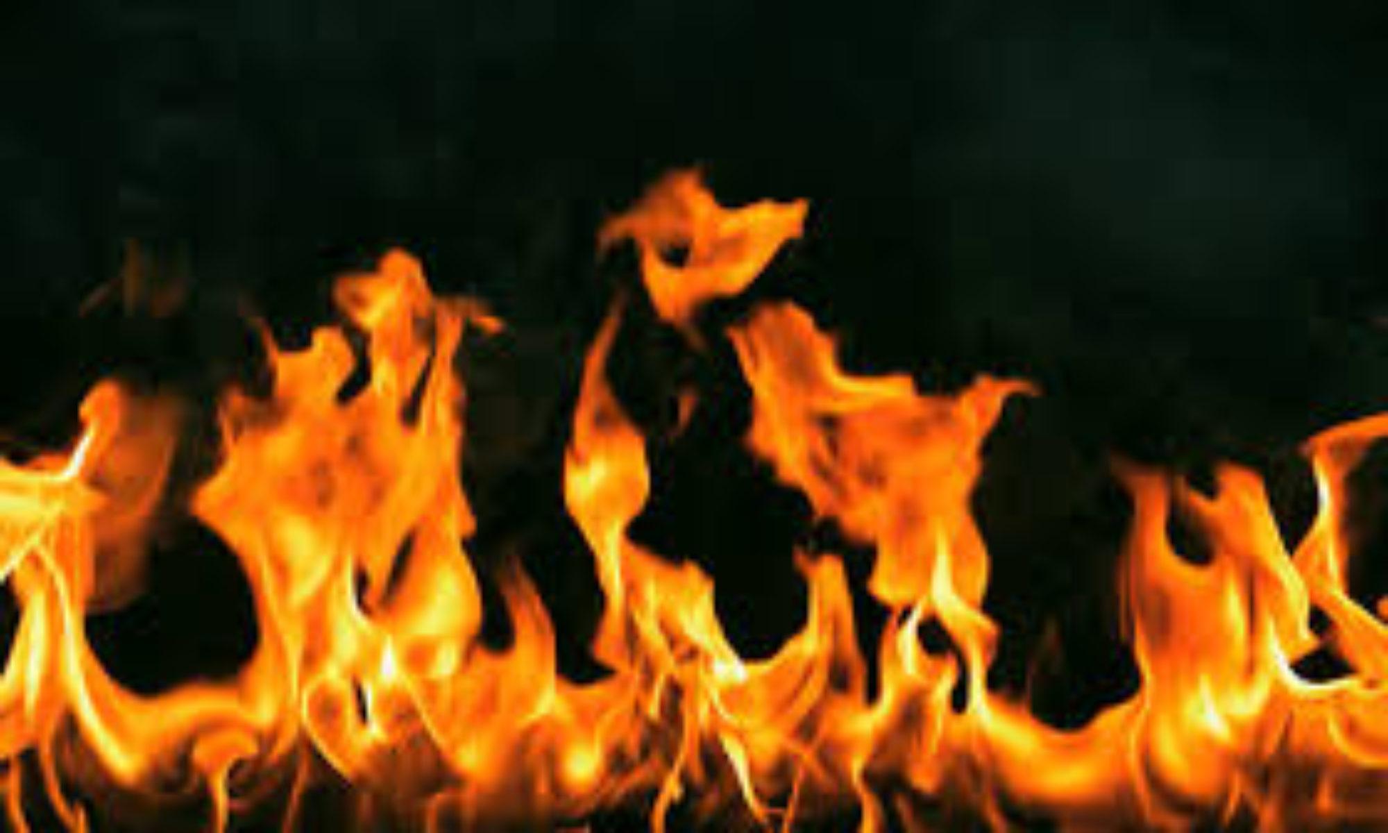 S J Firewood